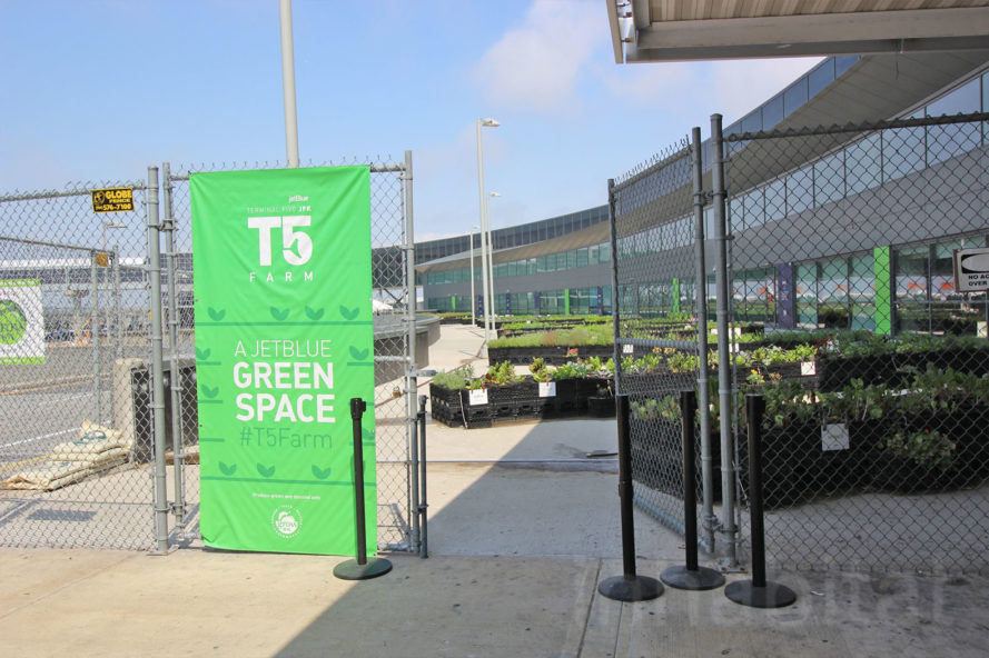 Jetblue Green space